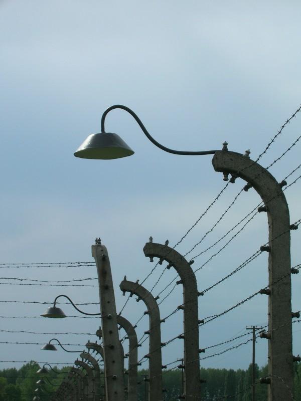 Auschwitz-I---Particolare-della-recinzione.jpg